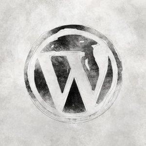 Conservar mi antiguo WordPress o comenzar de cero